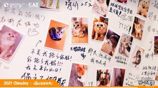 ChinaJoy现场撸猫 西山居《Project Cat》展区人类爱猫行为大赏  第6张