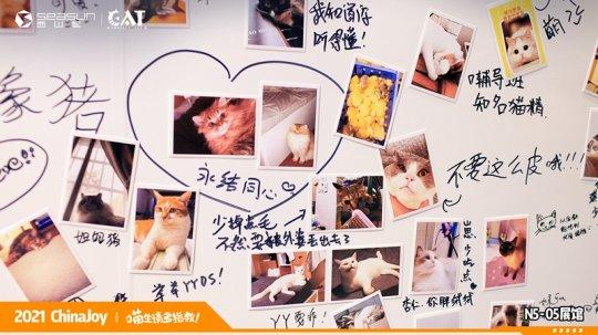ChinaJoy现场撸猫 西山居《Project Cat》展区人类爱猫行为大赏  第7张