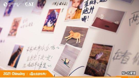 ChinaJoy现场撸猫 西山居《Project Cat》展区人类爱猫行为大赏  第8张