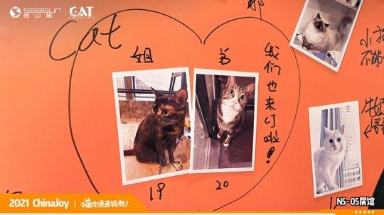 ChinaJoy现场撸猫 西山居《Project Cat》展区人类爱猫行为大赏  第9张